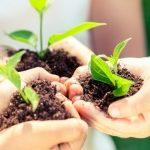 Znajdź zieloną planetę – bezpłatne prelekcje i warsztaty
